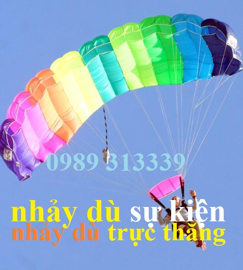 Image result for THUÊ TRỰC THĂNG